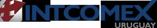 Logo Intcomex Uruguay