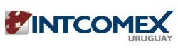 Logo Intcomex