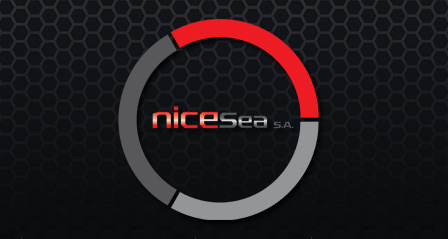 Nicesea Logo